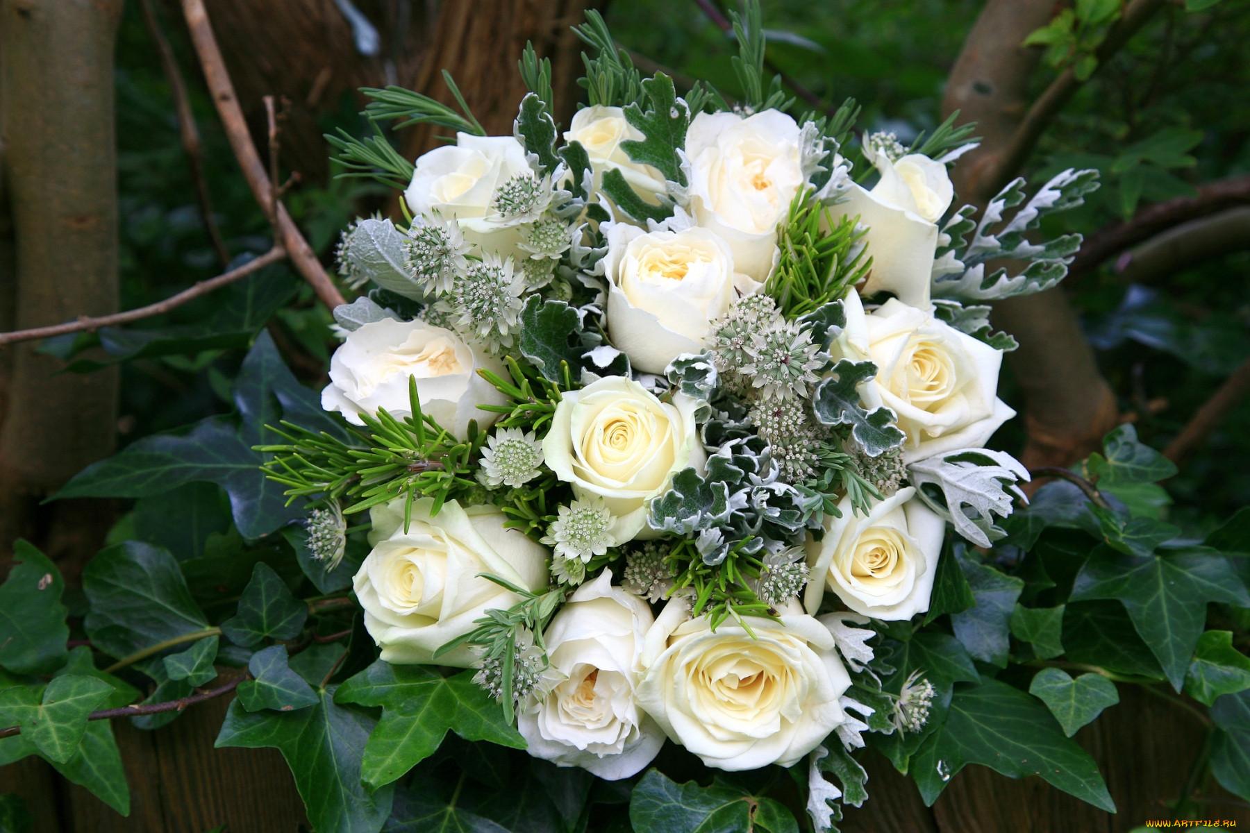 фото шикарного букета цветов высокого разрешения пленочный фотоаппарат для